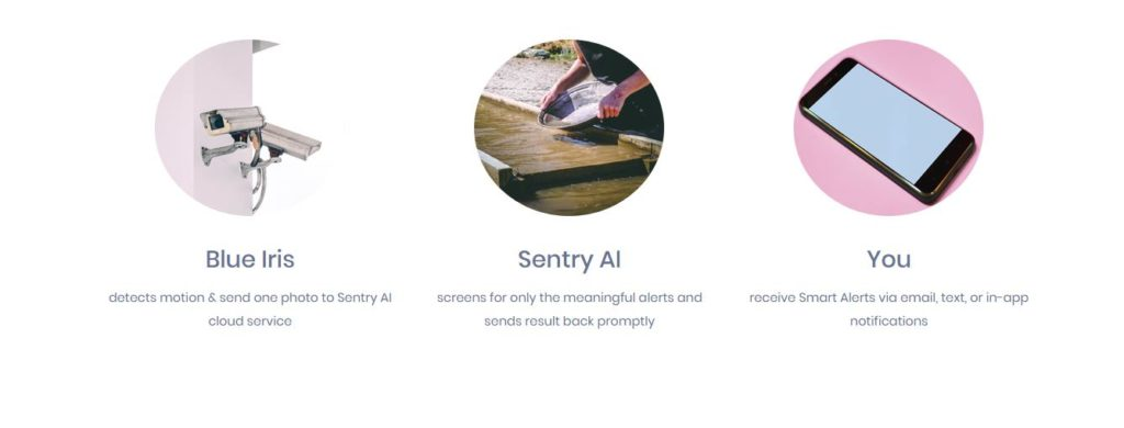 BlueIris with Sentry AI Human Detection Review – How accurate is the AI for recognising people? 1