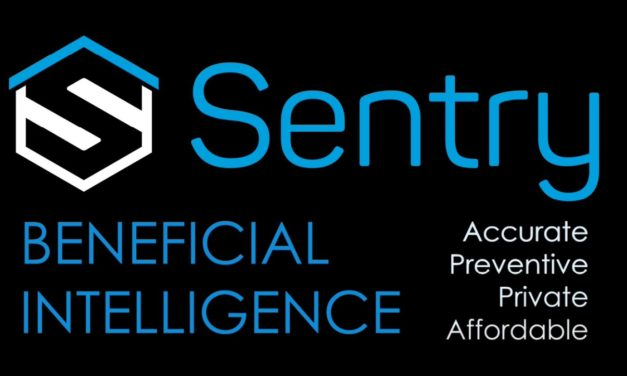 BlueIris with Sentry AI Human Detection Review – How accurate is the AI for recognising people?